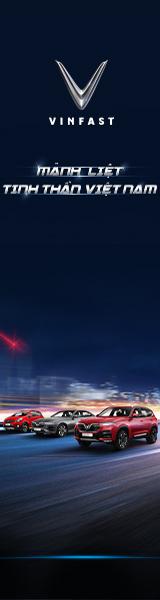 banner-160x600-vinfast