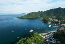 Cù Lao Chàm trở thành nơi bảo tồn nhiều loài sinh vật biển quý hiếm
