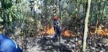Đà Nẵng: Cháy lớn suốt 5 giờ khiến 3 hecta rừng giáp ranh bị thiêu rụi