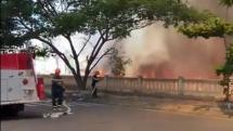 Hơn nửa hecta rừng tràm khô ở Đà Nẵng bất ngờ cháy rụi nghi bị đốt