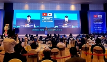 Việt Nam – Hàn Quốc tấm gương điển hình về hợp tác song phương