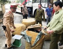 Phát hiện tài xế chở hơn 1.000 kg sụn gà không rõ nguồn gốc ở Huế