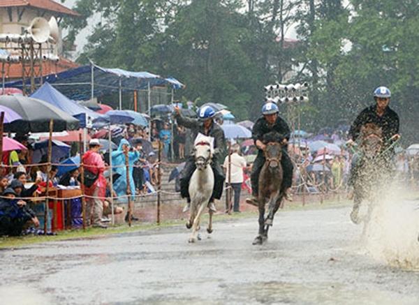 lao cai san sang cho festival vo ngua cao nguyen trang bac ha 2019