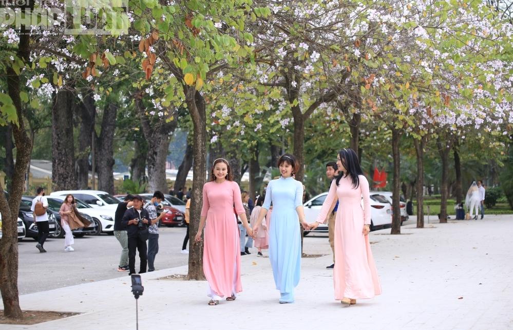 Người Hà Nội xúng xính lên đồ pose hình cùng sắc tím hoa ban