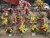 Sau ca nhiễm Covid-19 thứ 17 ở Hà Nội, dịch vụ mua hoa trực tuyến lên ngôi dịp 8/3