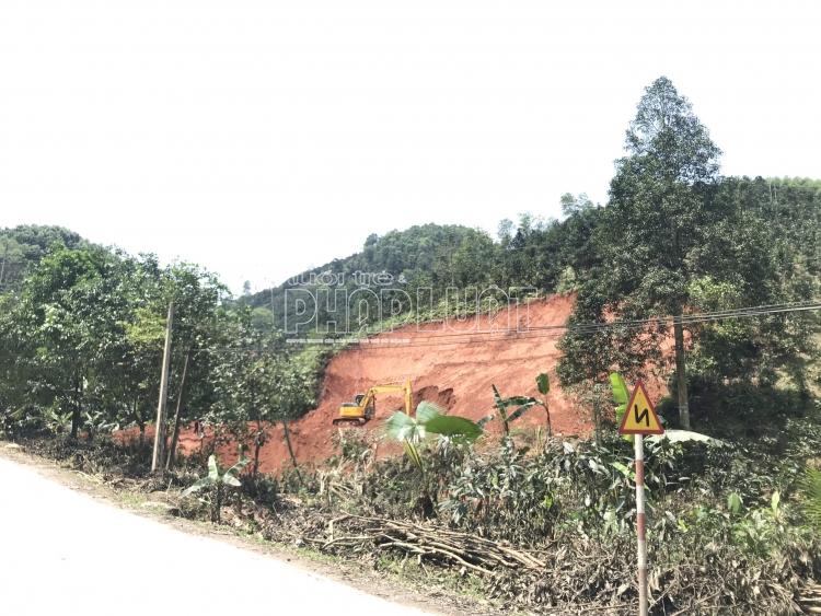Yên Bái: Một người dân tự ý san gạt đất rừng bị xử phạt 2,5 triệu đồng