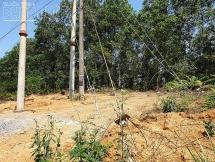 UBND TP Yên Bái và Công ty Điện lực Yên Bái sẽ giải quyết việc người dân kêu cứu vì đường điện cao áp