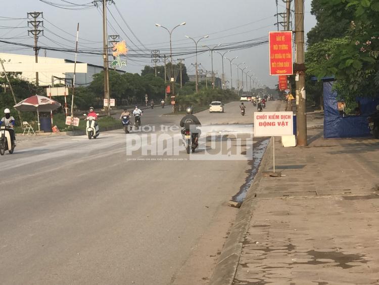 Thành phố Sông Công chủ động ứng phó với dịch tả lợn châu Phi