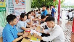 Trung ương Đoàn TNCS Hồ Chí Minh tư vấn giới thiệu việc làm cho thanh niên nông thôn