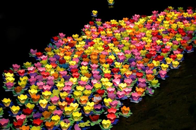 hoa dang ruc sang song sai gon trong dem vu lan