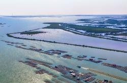 Chính phủ quyết định thành lập Khu kinh tế ven biển Quảng Yên, tỉnh Quảng Ninh