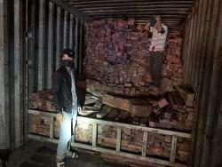 Phát hiện doanh nghiệp nhập lậu lượng lớn gỗ quý từ Lào vào Việt Nam