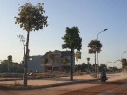 Bất thường 5 cá nhân trúng đấu giá hàng trăm lô đất tại Thái Nguyên với bước giá chỉ 1.000 đồng