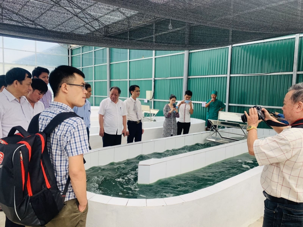 Khởi nghiệp từ tảo xoắn với mục tiêu vì sức khỏe người Việt