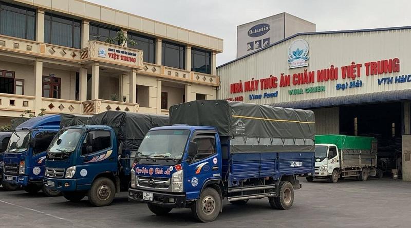 Hải Dương: Phạt Công ty TNHH Thức ăn chăn nuôi Việt Trung 100 triệu đồng