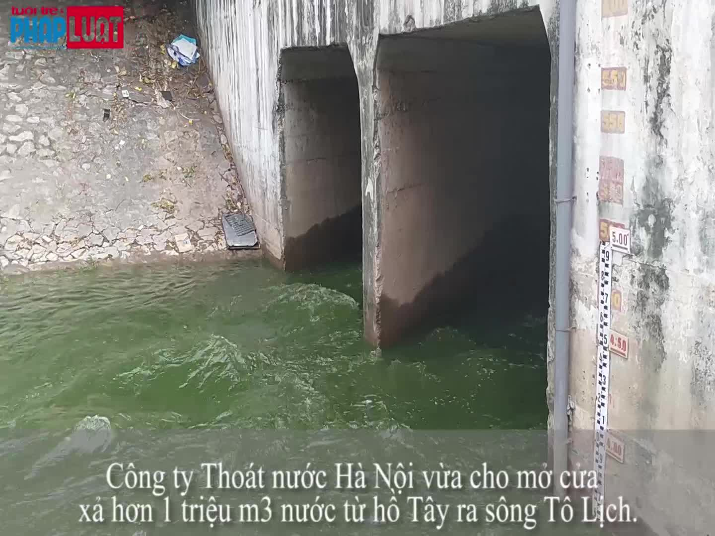 can nhung gi de song to lich co the hoi sinh