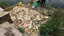 Bắt quả tang Hợp tác xã Xuân Dương đang xả thải ra sông Mã