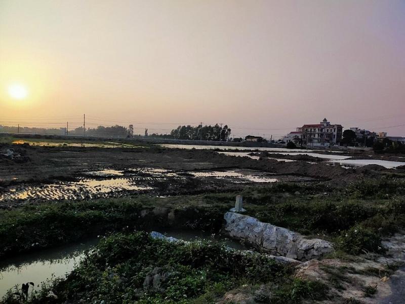 Dự án khu dân cư mới phía Nam xã Tân Hương 2 năm vẫn chỉ là bãi đất hoang.