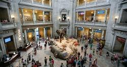 Hà Nội duyệt đồ án quy hoạch Bảo tàng Thiên nhiên hơn 38 ha