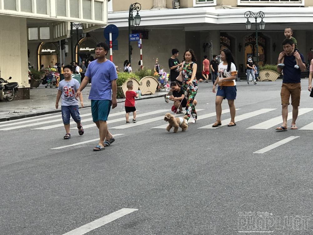 Không xích, không rọ mõm, chó thoải mái chạy rông trên phố đi bộ Hồ Gươm