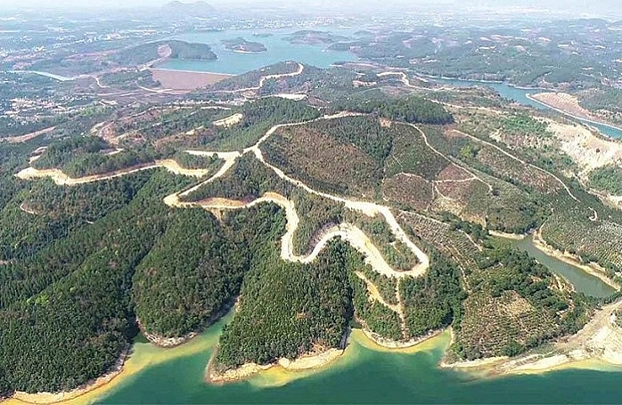 Bất động sản tuần qua: Dự án 25.000 tỷ đồng của Sài Gòn Đại Ninh làm mất 257ha đất rừng
