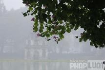 Hà Nội sắp rét trở lại, bão Phanfone áp sát biển Đông
