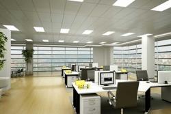 Nhu cầu văn phòng chia sẻ tiếp tục tăng