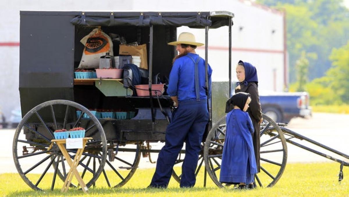Người Amish tập trung nhiều nhất ở 3 bang tại Mỹ là Ohio (đông nhất), Pennsylvania và Indiana. Ảnh: AP