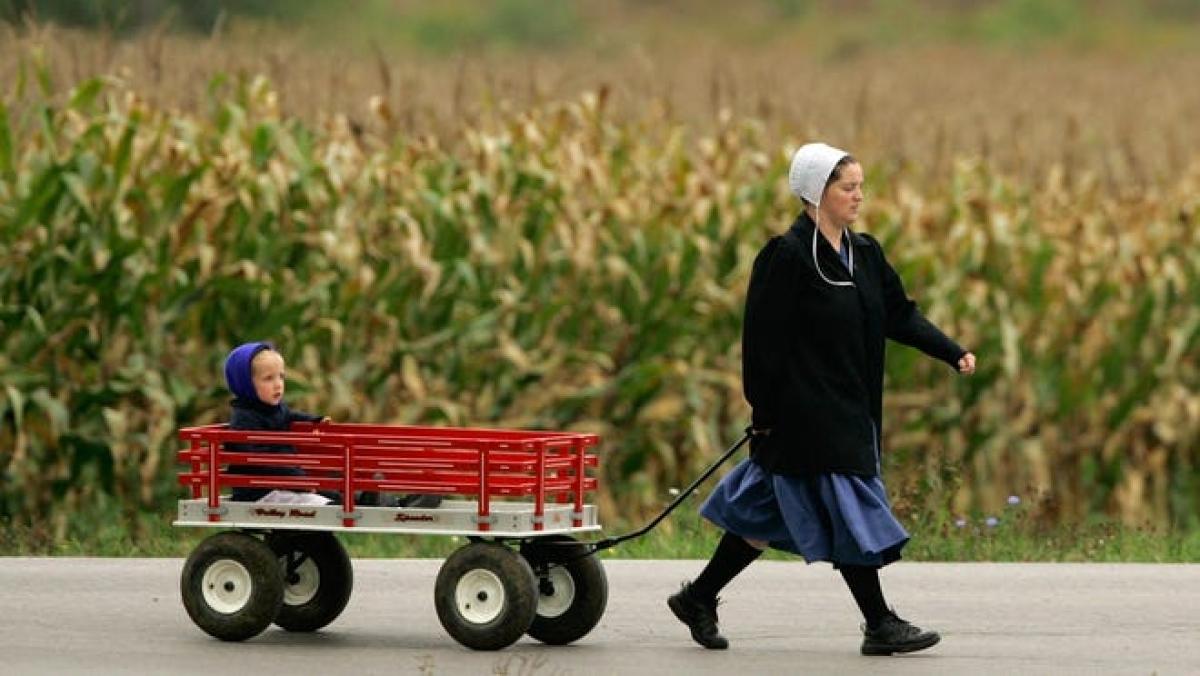 Một người phụ nữ kéo theo đứa trẻ trên một toa xe ở Burton, bang Ohio, nơi có đông người Amish sinh sống nhất. Ảnh: AP