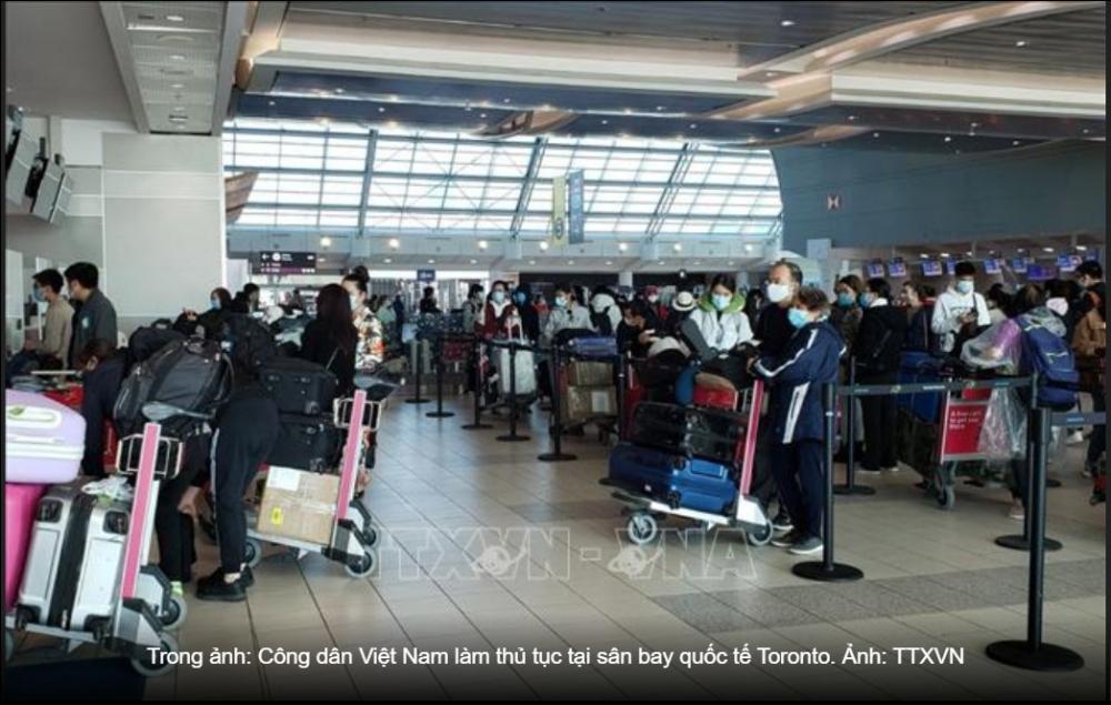 Dịch COVID-19: Đưa hơn 350 công dân Việt Nam từ Canada và Hàn Quốc về nước - Ảnh thời sự quốc tế - Văn hóa xã hội - Thông tấn xã Việt Nam (TTXVN)