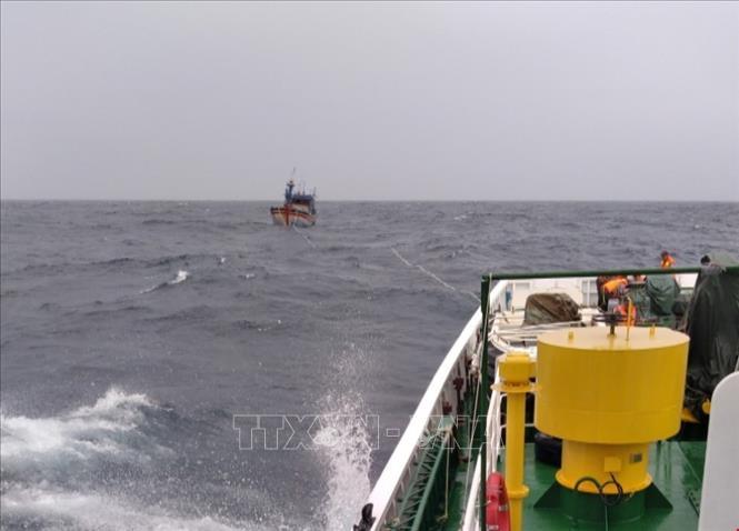 Bão số 9: Đã cứu được 3 ngư dân Bình Định trôi dạt trên biển