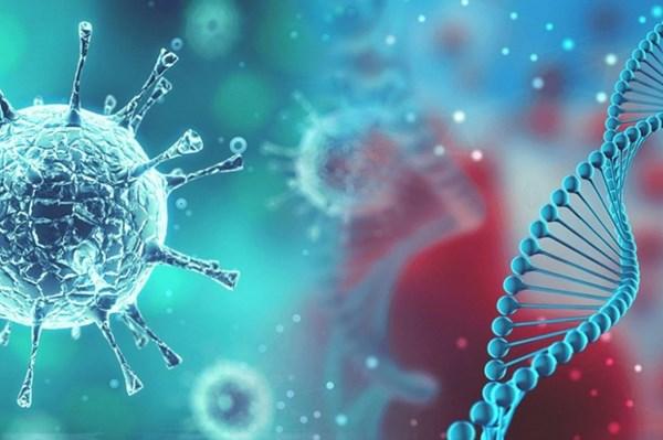 Trung Quốc: Tỉnh Hồ Nam xác nhận một bệnh nhân nhiễm virus cúm gia cầm H5N6