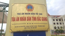 TAND tỉnh Bắc Giang y án sơ thẩm vụ người dân hủy hoại đất nông nghiệp rồi... đòi Chủ tịch xã bồi thường