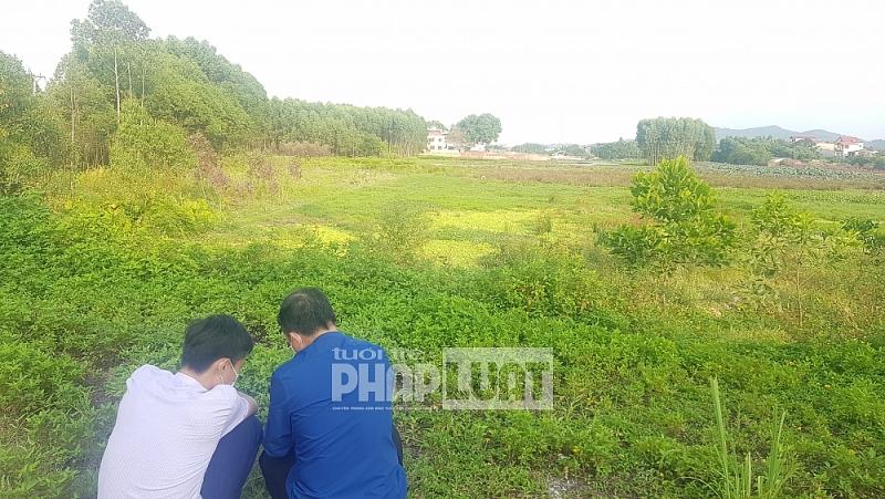 Thái Nguyên: Có 43 dự án đang chờ chấp thuận chủ trương đầu tư