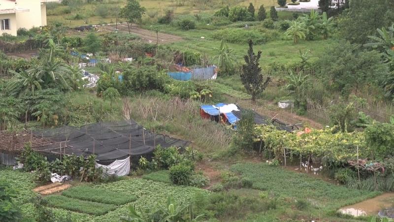 Bắc Giang: Hơn 73 nghìn trường hợp vi phạm về quản lý và sử dụng đất