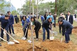 Tin tức Môi trường tuần qua: Nhiều hành động thiết thực nhằm chung tay bảo vệ môi trường