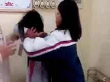 Xác minh vụ nữ sinh bị bạn túm tóc, đánh hội đồng tại Quảng Ninh