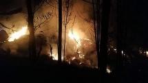 Cháy rừng lan rộng hơn 10ha, 1 người tử vong