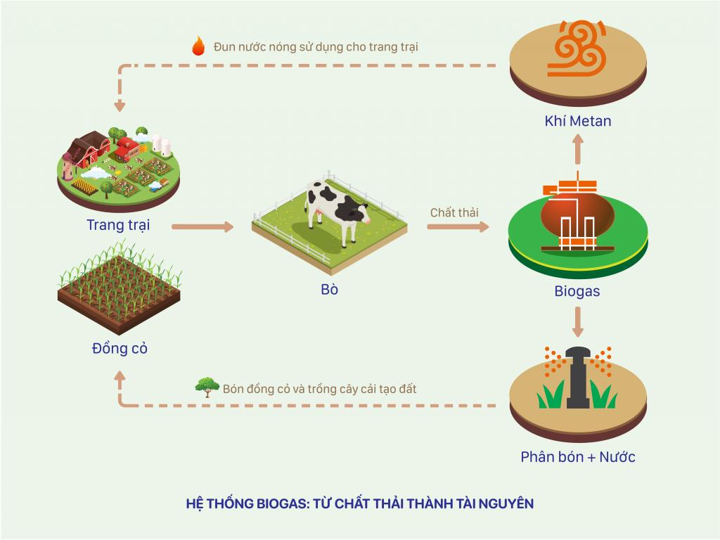 Sơ đồ về hệ thống Biogas tại các trang trại bò sữa Vinamilk