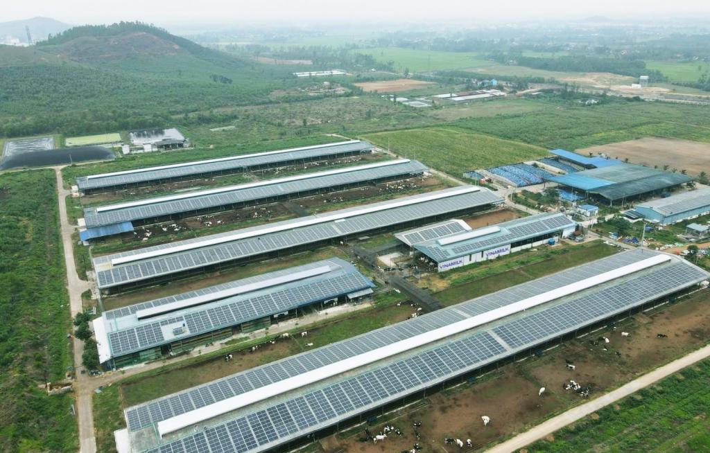 Năng lượng mặt trời đã được đưa vào sử dụng tại trang trại Vinamilk Bình Định từ đầu năm 2021