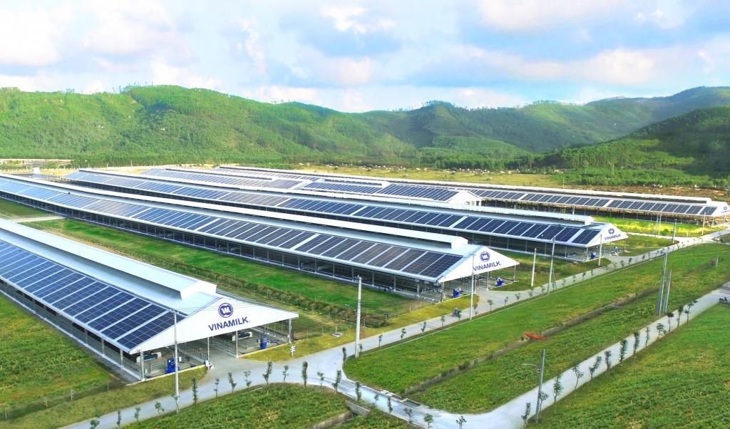 Trang trại Vinamilk Quảng Ngãi đã hoàn thiện và đưa vào hoạt động hệ thống năng lượng mặt trời