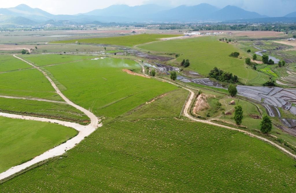 Cao nguyên Xiêng Khoảng có lợi thế lớn về quỹ đất, khí hậu phù hợp với chăn nuôi bò sữa