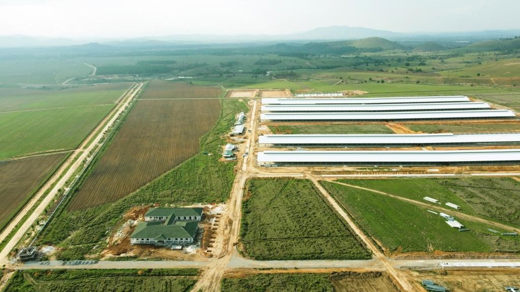 Tổ hợp trang trại tại Lào của Vinamilk đã hoàn thiện các hạng mục xây dựng cơ bản của cụm trang trại đầu tiên, dự kiến đi vào hoạt động vào đầu năm 2022