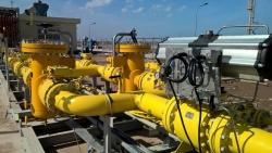 Cổ đông lớn mua thêm cổ phiếu PV Gas D