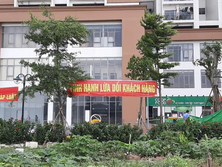 cu dan chung cu tu hiep plaza cang bang ron to cong ty vinh hanh lua doi khach hang
