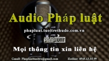 audio phap luat ngay 137 khoi to hai doi tuong mua ban tang tru trai phep chat ma tuy tai quan bar karaoke ruby one