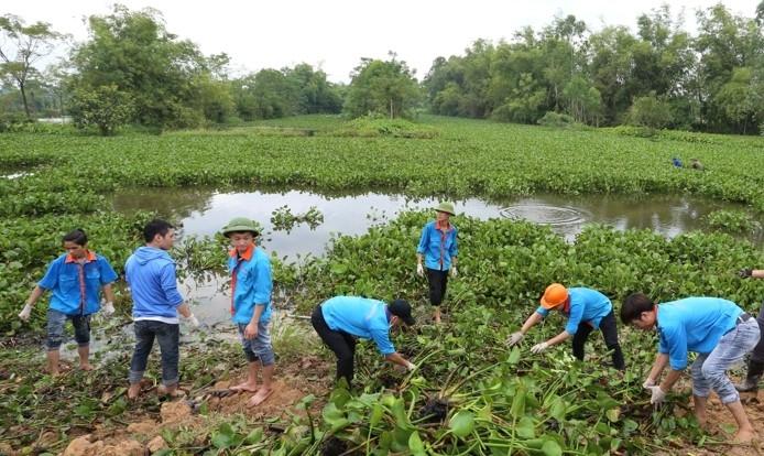 Bắc Ninh: Thanh niên tình nguyện chung tay xây dựng nông thôn mới bền vững