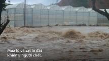 Mưa lũ tàn phá nhiều tỉnh Tây Nguyên, Nam Bộ
