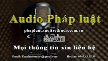 Audio Pháp luật ngày 17/9: Tạm giữ nam thanh niên cướp giật tài sản tại Hà Nội