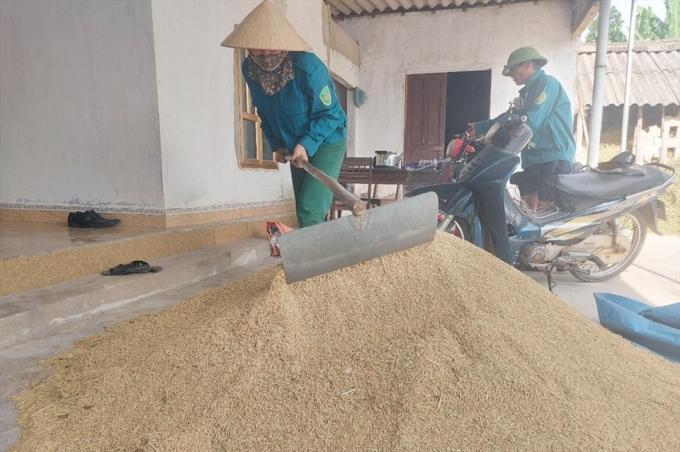 Giá thấp, nhiều nông dân tích trữ lúa chờ lên cao mới bán